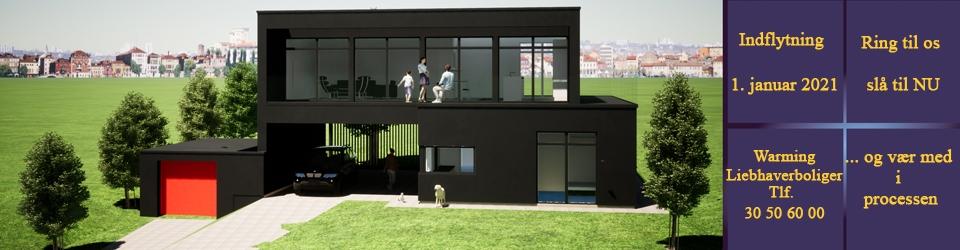 Nybygget luksushus pr. 1. januar 2021 - Bredballe Vejle